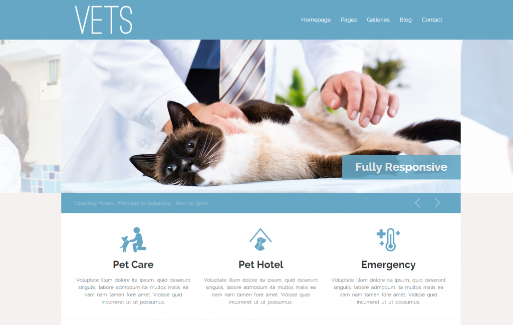 diseno-web-clinica-veterinaria